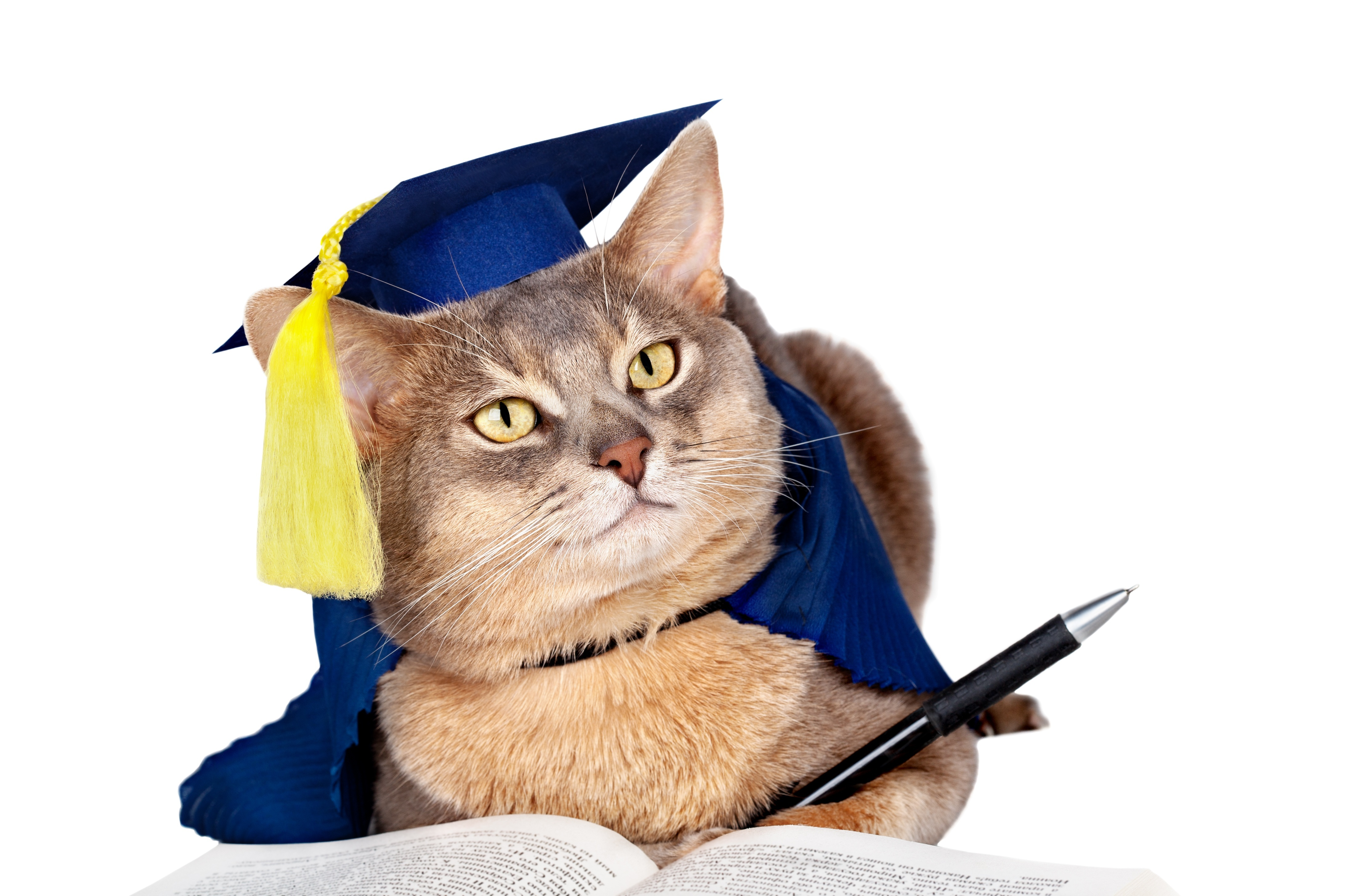 Moving to Grad School