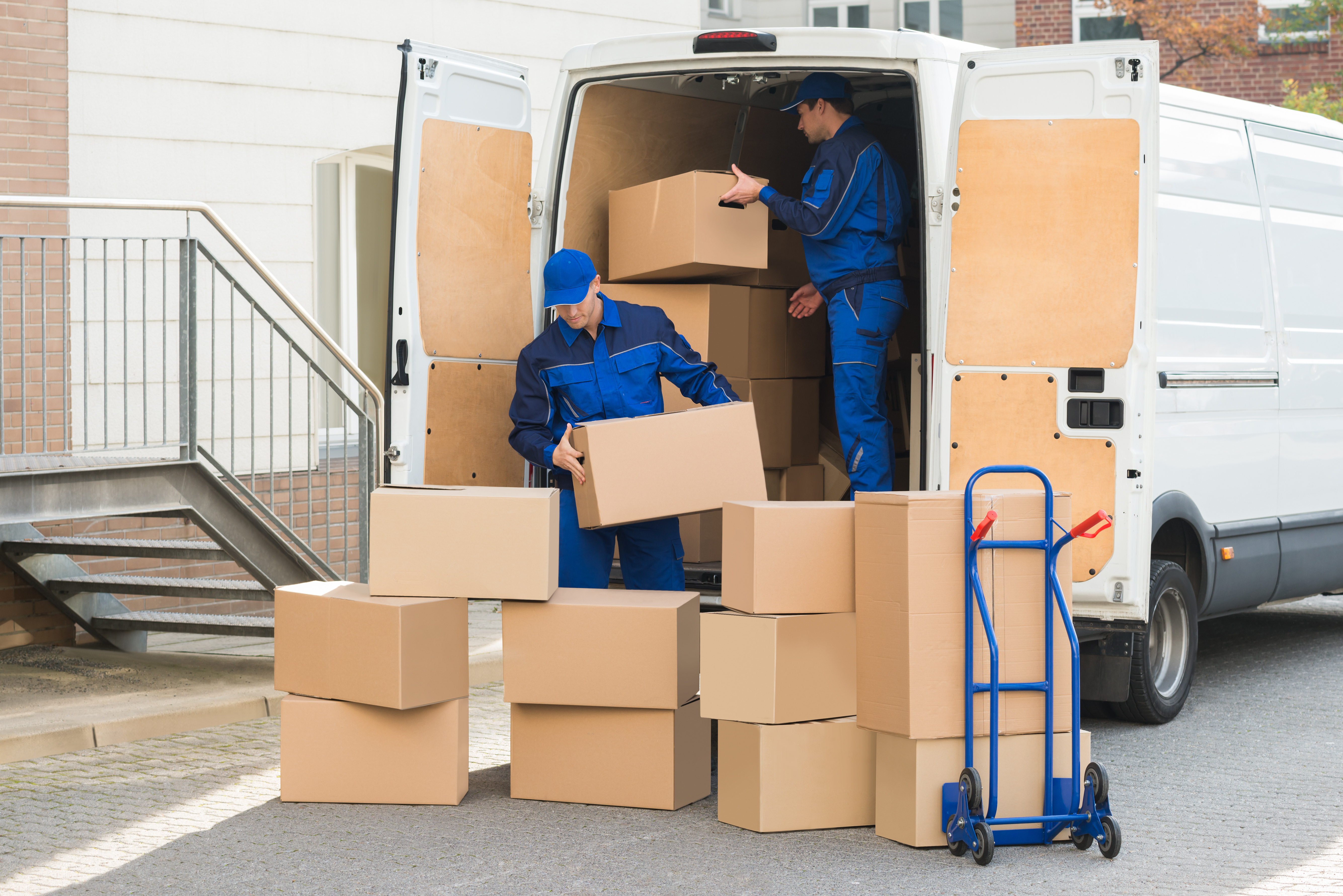 What movers say