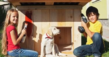 home design pet friendly