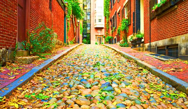 unpakt preps boston college students for move back