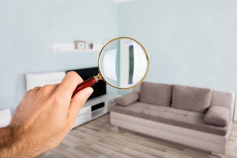 Visual Home Inspection