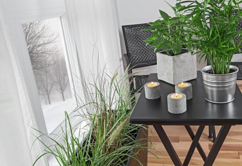 garden winter-ready