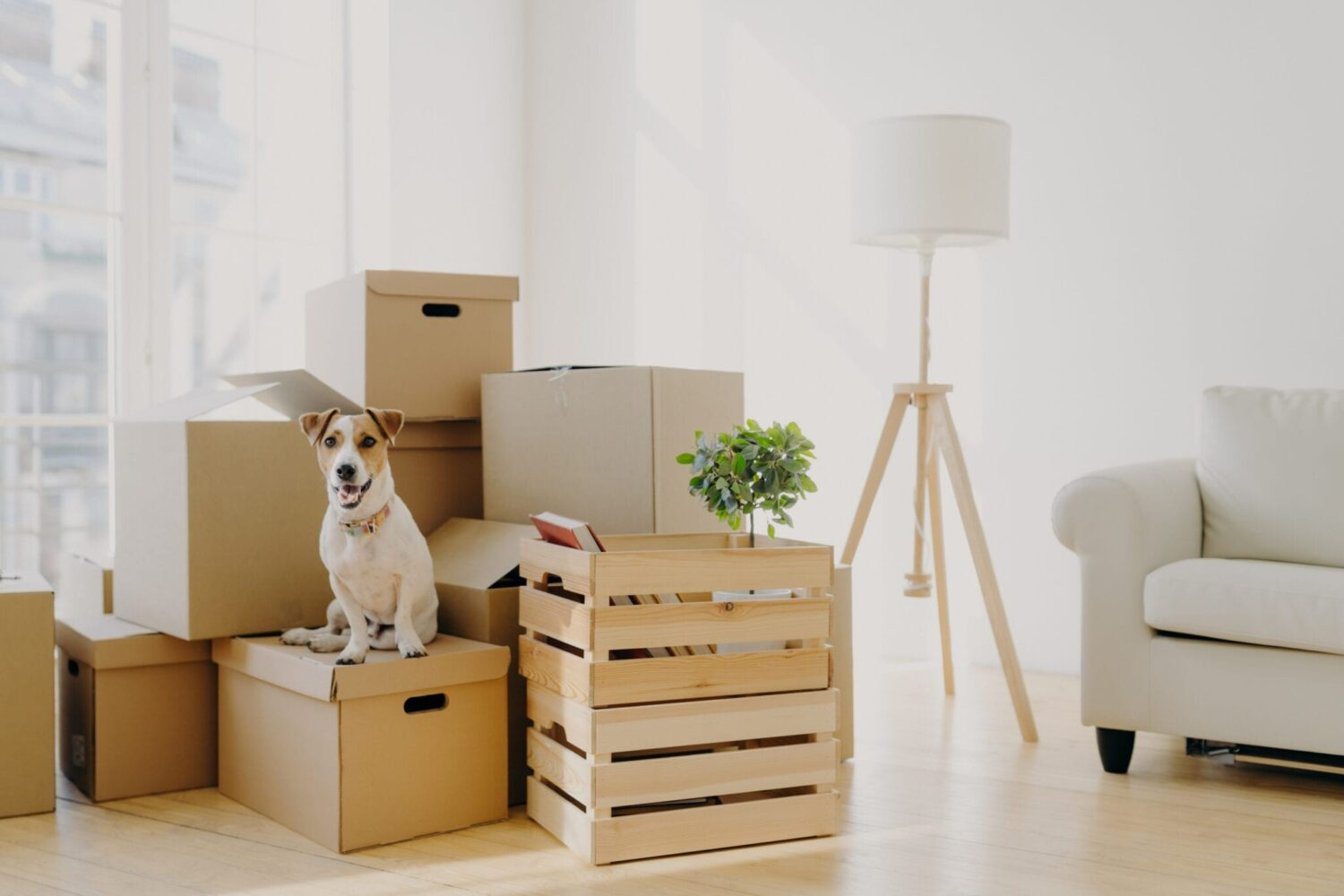 7 Things You Should Know About Moving and Storage Services